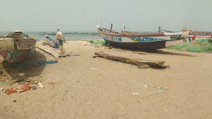 vishaven gambia