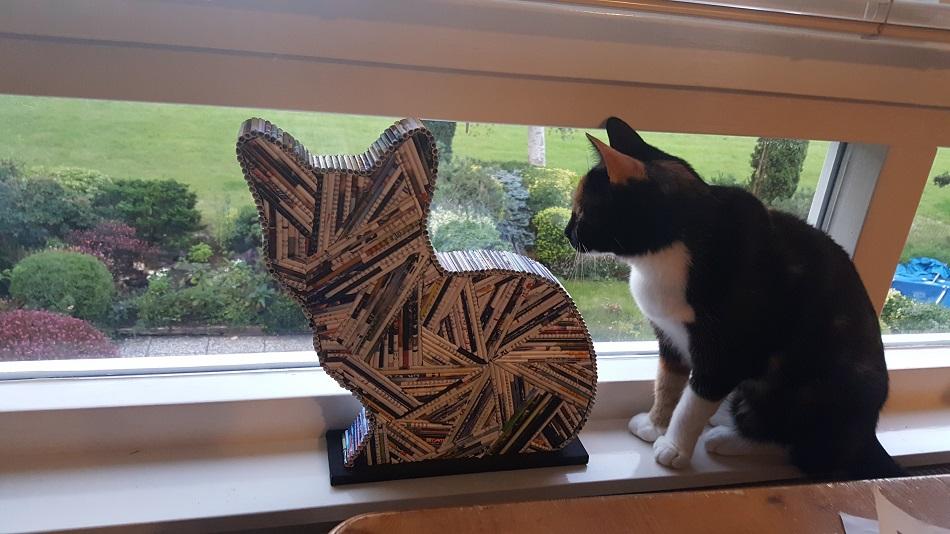 kat-buiten-kijken