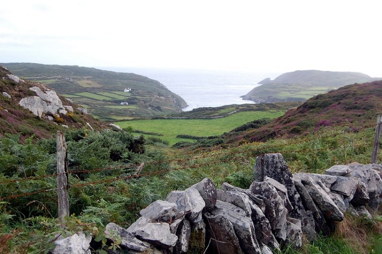 Picture of Cape Clear, Country Cork