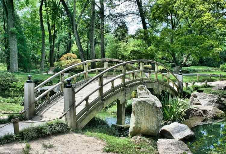 Picture of Japanese Garden