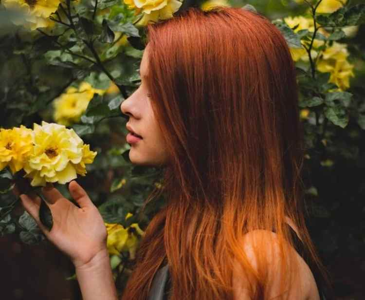 Picture of Red Hairs