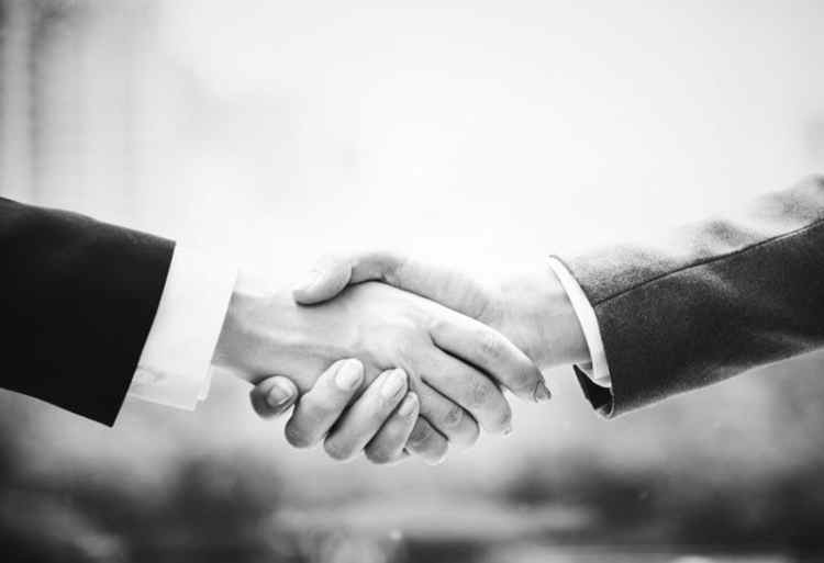 Picture of Hand Shake