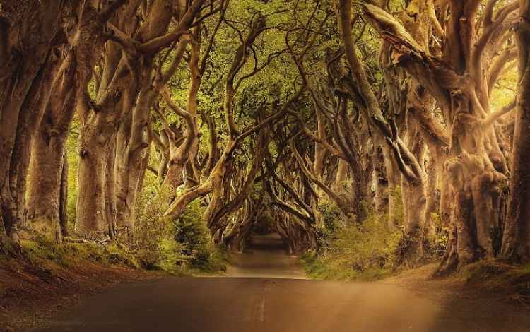 image of game of thrones location