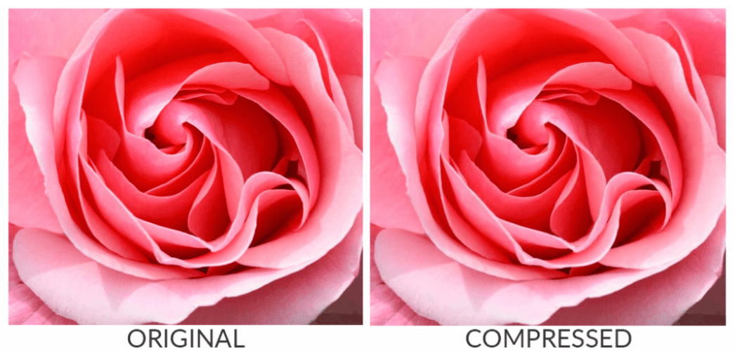 A comparsion between a non-compressed image and a compressed image. They look identical.