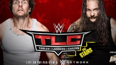 Highs and Lows: WWE TLC 2014's Best and Worst Moments