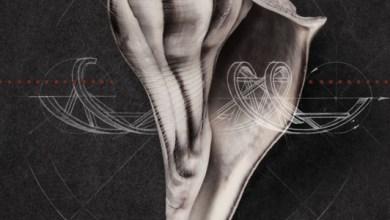 New Music Monday: Robert Plant, Interpol, Ryan Adams, Karen O, and More!