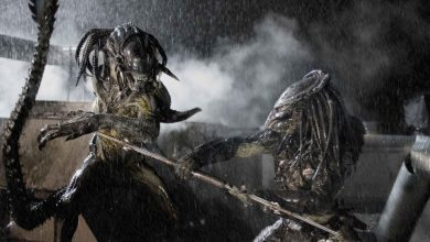 Photo of Alien vs. Predator Fan Edit Removes Humans, Makes Movie Awesome