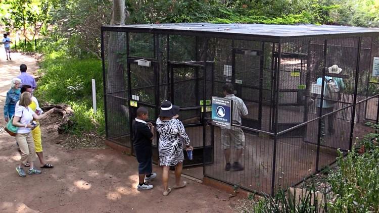 aviary-entrance