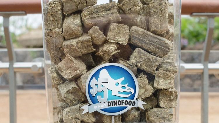 dino-food