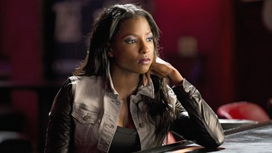 Photo of Arrow: Here's Who Rutina Wesley Will Be Playing in Season 4