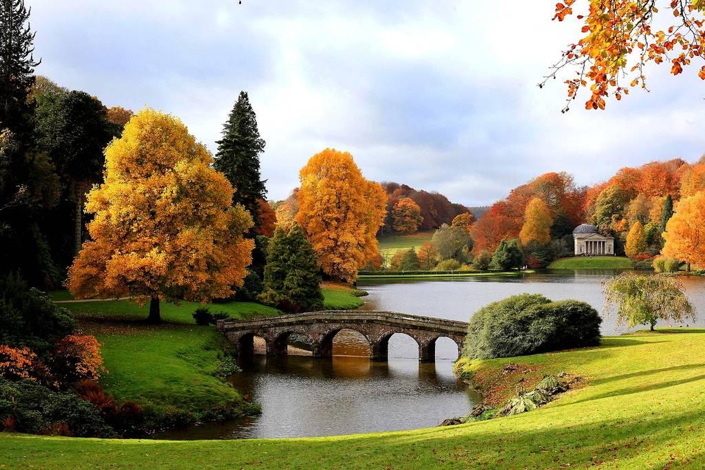 Uno splendido paesaggio ricco lussuoso autunno doro nel