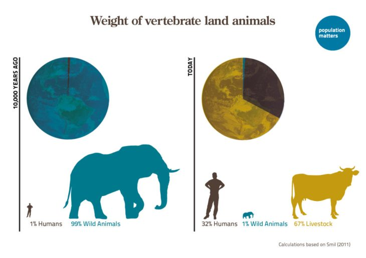 Weight of vertebrate land animals and human