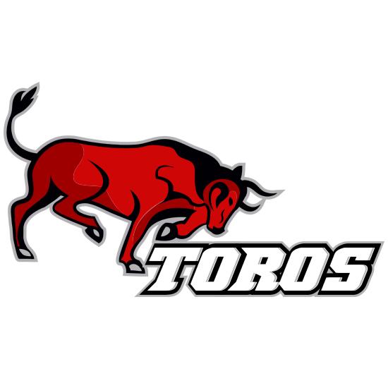 red bull logo design