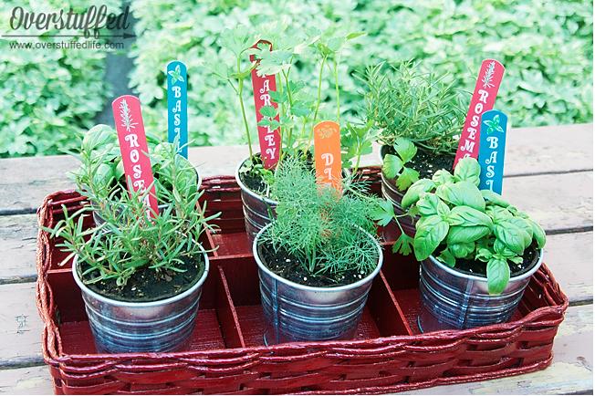 patio herb garden overstuffed life