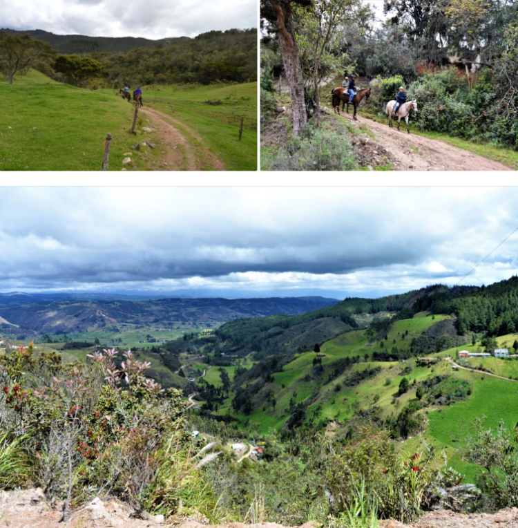 Rancho Patachocha in Ecuador