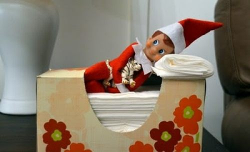 Elf napping in tissue box