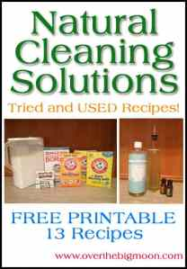 Natural Cleaning Solutions - Recipes Printable