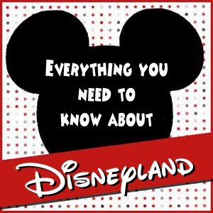 Everything you need to know about Disneyland! Land by land breakdown, the best places to eat, joke cards, good deed cards, and more!