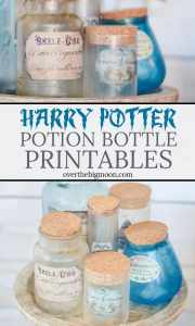 Harry Potter Potion Bottle Printables PIN IT Button!