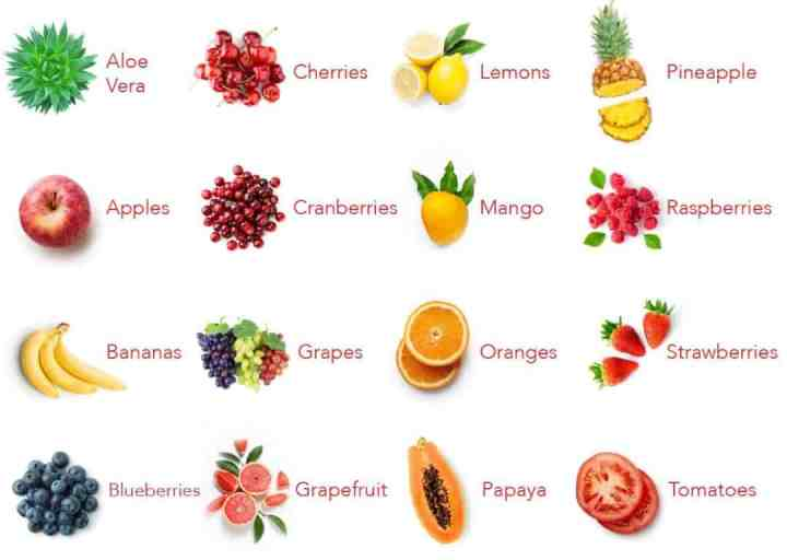 A graph of the fruits used in the Balance of Nature fruit capsules.
