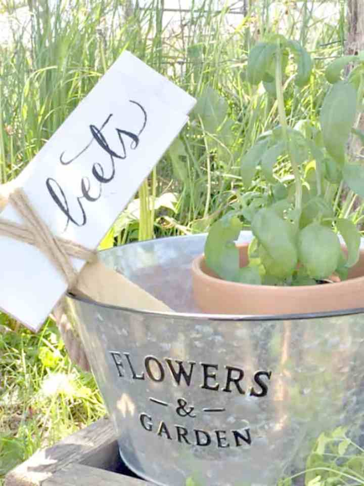 A Garden Marker Sign made from wood and twine that has the word Beets hand painted in it and in a galvanized bucket with the word Flowers on it. In the bucket next to the sign is a plant in a terracotta pot.