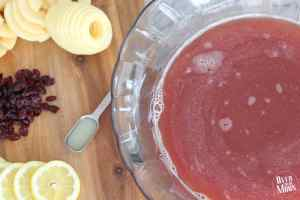 A bowl of punch with apple, lemon and craisin garnishes next to it.