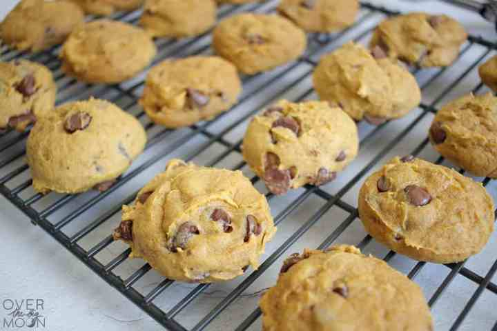 A black cooling rack that has over a dozen pumpkin chocolate chip cookies on it.