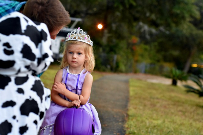 Princess Sofia Toddler Costume