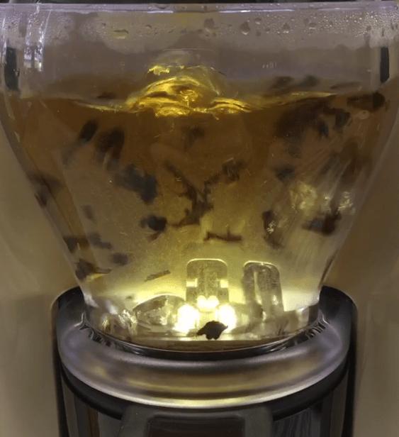 La bulle d'infusion de TO by Lipton : une révolution technologique dans le domaine du thé - ©Chloé Chateau