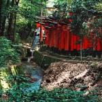 Wanderlust Wednesday: Fushimi Inari
