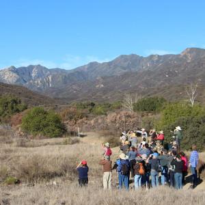 WAO Bird Walk on the Ventura River Preserve