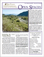 Open Spaces Newsletter - Fall 2011 (PDF)