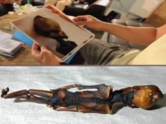alien humanoid body dr. greer