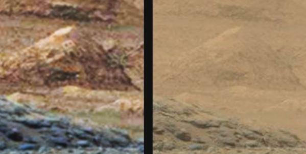 À esquerda, a foto foi tratada com um filtro para realçar contraste; à direita está a foto original.