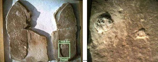 arqueologia proibida