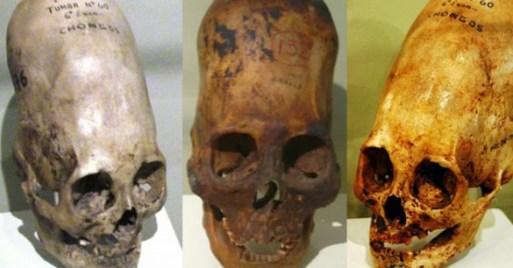 Crânios alongados de Paracas