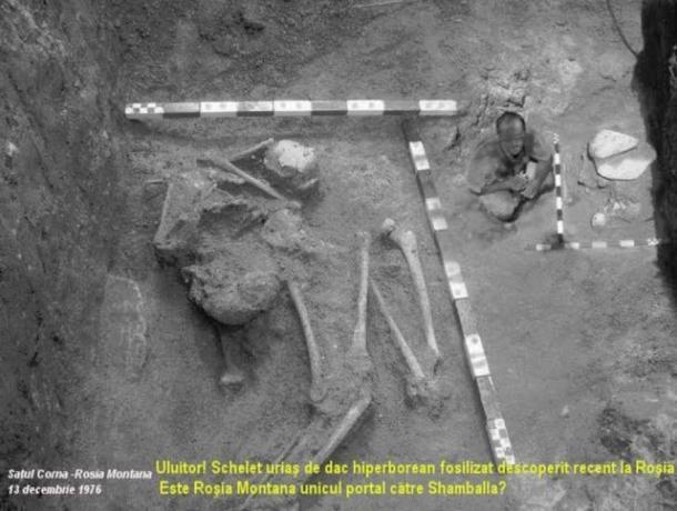 Uma das fotos de um esqueleto gigante que sobreviveu.  Ela foi desenterrada numa mina de outro na Rosia Montana, Romênia, em 13 de dezembro de 1976.  Ele mede 10 metros de altura.
