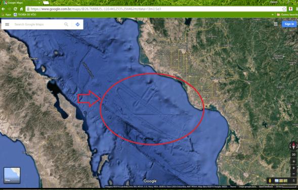 estruturas-estranhas-fundo-do-mar-golfo-da-califórnia