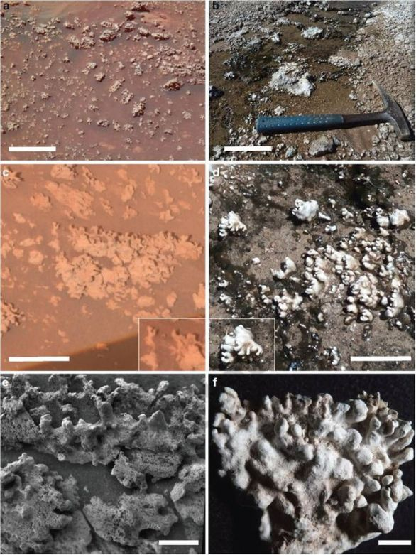 Home Plate opaline silica (left) occurs in nodular masses with digitate structures that resemble those at El Tatio (right). Credit: ASU/Ruff & Farmer