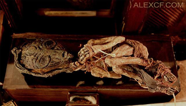 Cadáveres de criaturas legendárias são encontrados em porão de antiga mansão 1