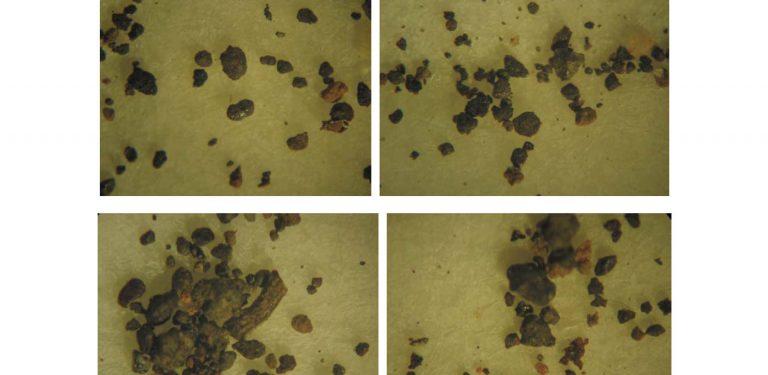 IMPORTANTE: Análise do solo do local da abdução de Travis Walton indica ocorrência de evento anômalo 1