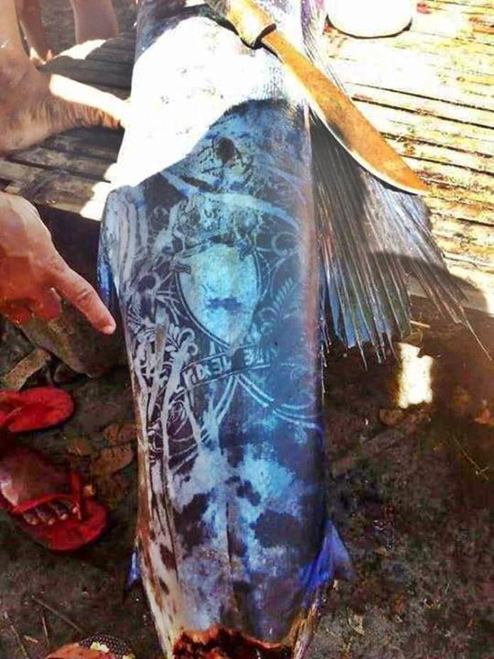 peixe com tatuagens