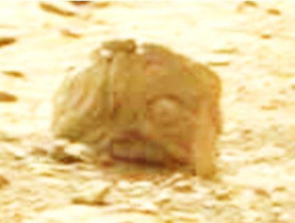 Temos provas suficientes de extraterrestres em Marte