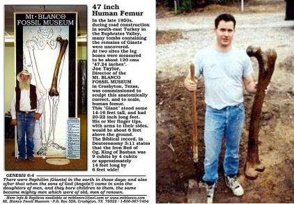 A realidade dos esqueletos humanoides gigantes. Por que não estamos falando a respeito disso? 2