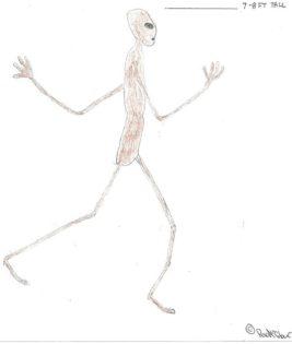 Homem relata ter visto alienígena alto nos Estados Unidos 1