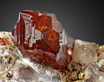 misteriosos organismos vivendo dentro de gemas preciosas