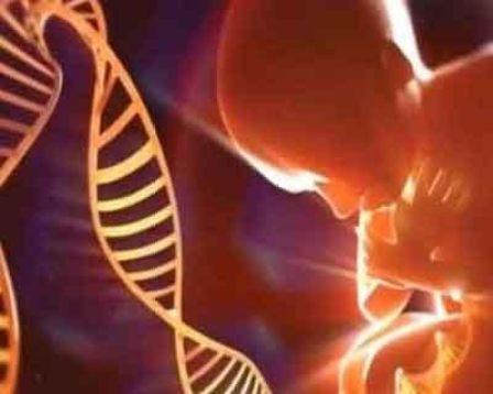 China anuncia nascimento de dois bebês 'editados' em laboratório