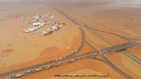 Planeta em choque: Enchentes de proporções bíblicas no deserto e pássaros caindo do céu sem motivo óbvio 4