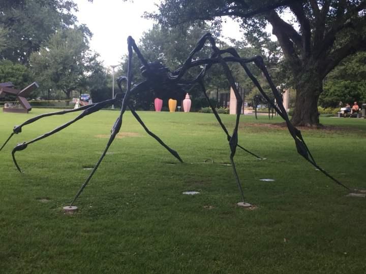 """""""Aranha Gigante"""": O Extraordinário Caso Mirassol"""