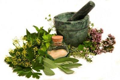 Remedios populares de la hierba Cómo deshacerse de los piojos y GDID 1 vez para siempre